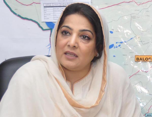 PTI fails to prove rigging in 2013 general elections: PML-N