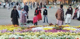 Exhibition of autumn flowers in Islamabad from December 4 to 6